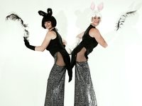 Bunny Girls Stilt Walkers